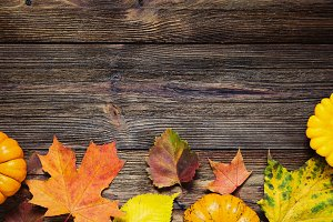 Fall background with fallen leaves