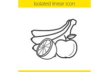 Fruits linear icon. Vector