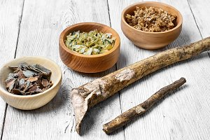 Healing the root of elecampane