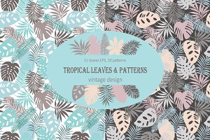 Vintage design of tropical leaves.