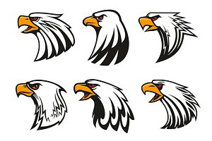 Bald Eagle ppowerful mascots