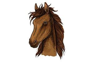 Brown proud horse