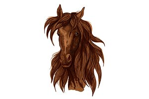 Brown horse artistic portrait
