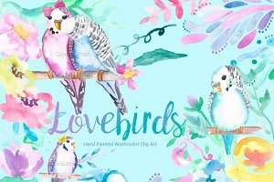 Watercolour Clip Art - Lovebirds