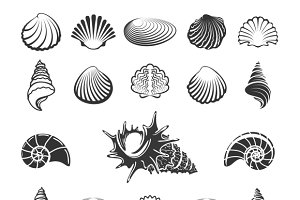Sea shell silhouettes