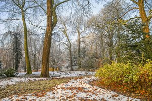 Snow in autumn park