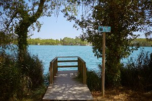 Outlook on a lake