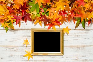 Autumn leaves seasonal background