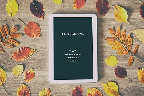Autumn business concept