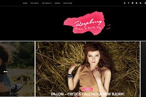 Raspberry Dark Blogger Template