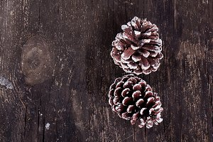 Christmas decoration - pine