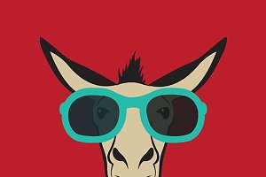 Donkey wearing blue glasses.