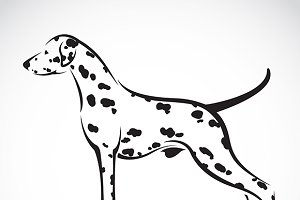 Vector image of a dalmatian dog.