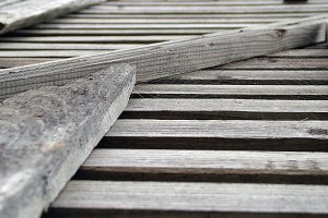 Wood Texture - Surface