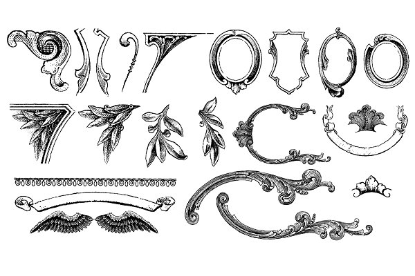 Currency Ornaments Vector Pack