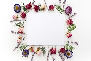 Framework with dry flowers on white background. Flat lay, overhead view