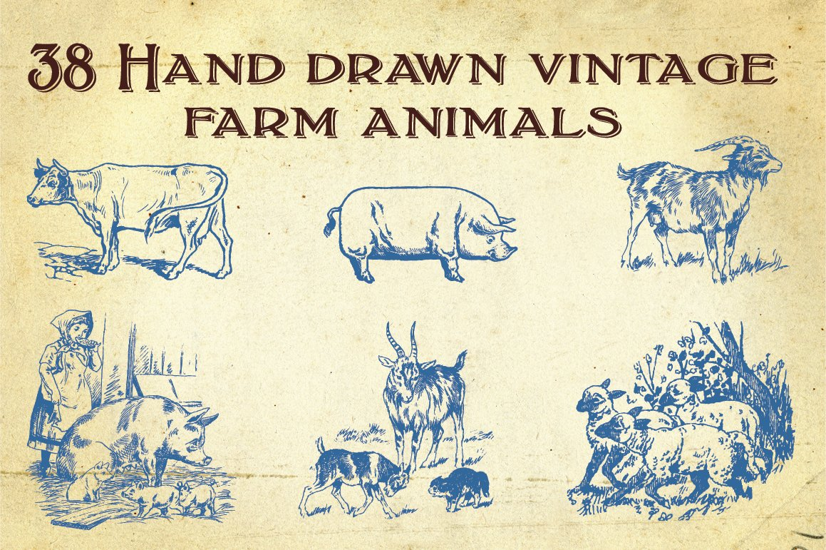 38 Hand Drawn Farm Animals Illustrations Creative Market