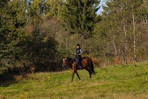Elegant attractive woman riding a horse