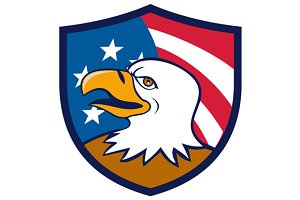 Bald Eagle Smiling USA Flag Crest