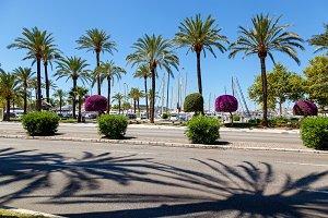 Quay in Palma de Mallorca