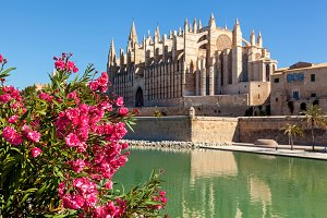 The Cathedral of Santa Maria of Palma