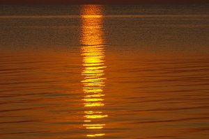 Sea sunset.Beautiful gold sunset.