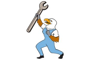 Mechanic Bald Eagle Spanner Standing
