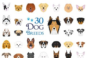 30x Dog breeds Vector Collection