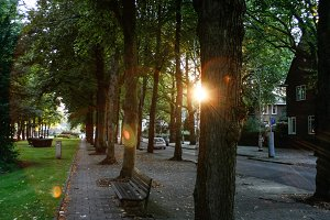 Last Sun Shine