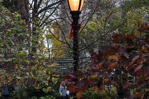 Madison Square at Christmas