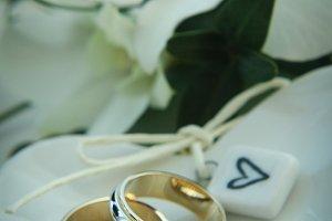Mr. & Mr., floral and wedding bands