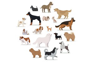 Dogs Breed Set in Cartoon Style
