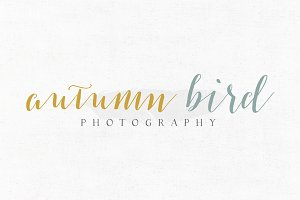Autumn Bird Premade Logo Template