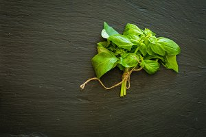 Basil leafs on dark stone background