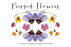 Pressed Flower Pattern