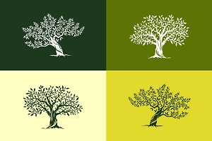 Vector olive trees isolated set