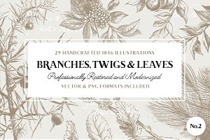 29 Branches, Twigs, & Leaves No.2