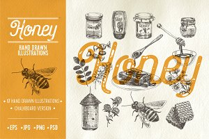 Hand drawn honey illustrations