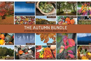 THE AUTUMN BUNDLE