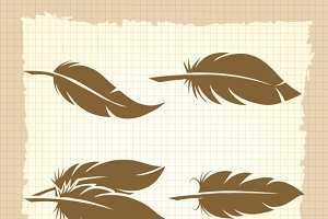 Vintage feather set on notebook page