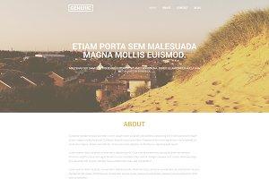 Generic website template
