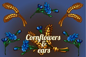 Cornflowers and ears
