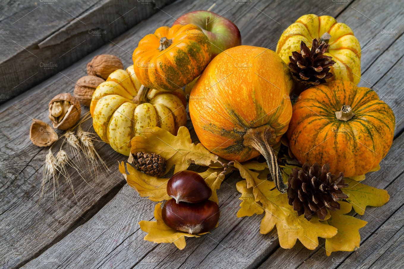 Thanksgiving Decorations On Rustic Background Holiday Photos Creative Market