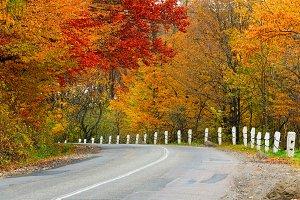 Autumn rural road