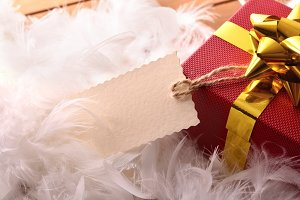 Red gift feathers with tag hanging