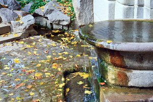 Autumn park waterfalls