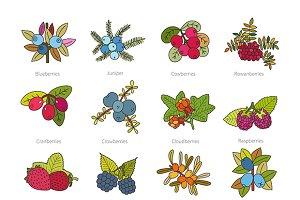 Doodle berries set