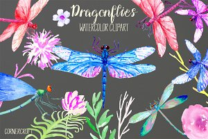 Watercolor Dragonfly damselfly
