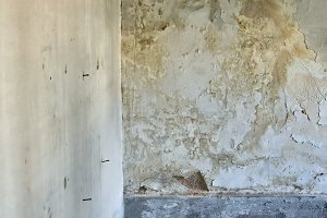 Moldy Wall Texture