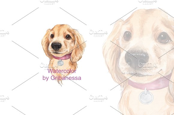 Cute dog. Watercolor - Illustrations
